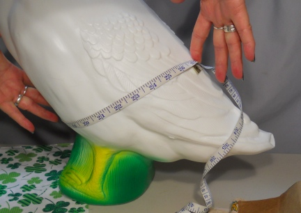 Measuring Your Goose to Make Patterns 3
